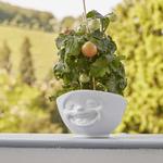 bol 500ml fou-rire blanc heureux cache-pot plantes tomates tassen