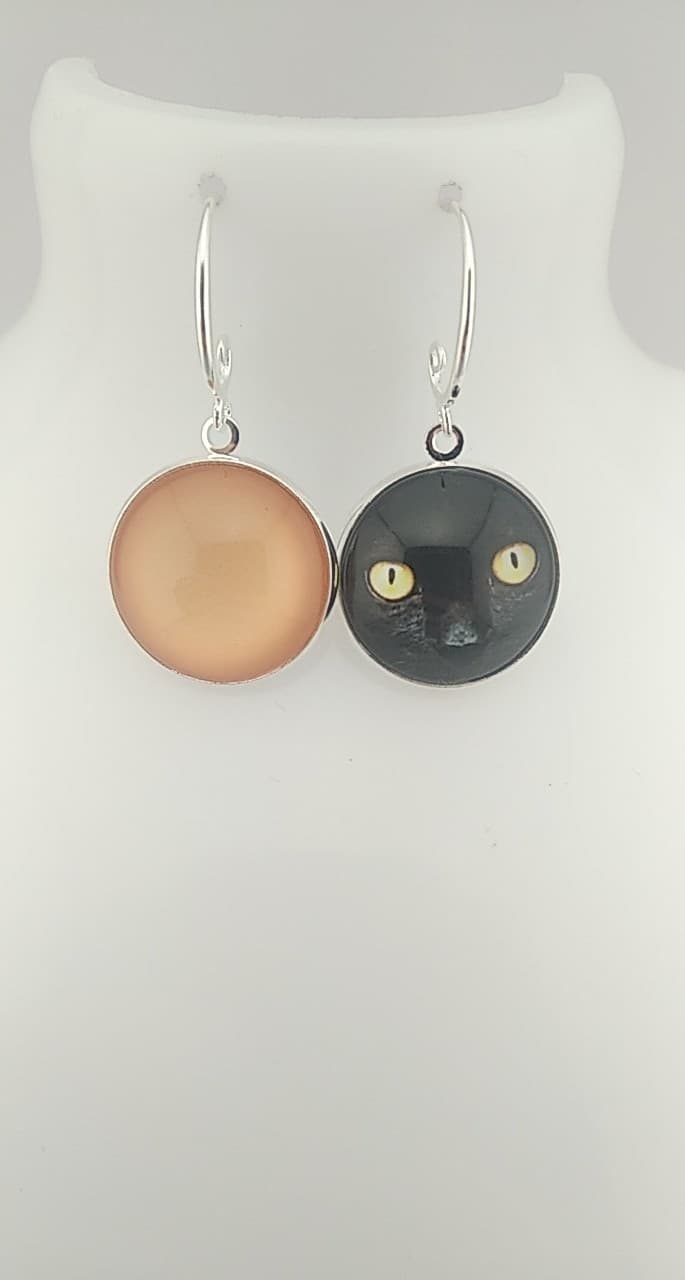 yeux de chats