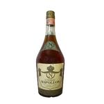 NAPOLEON Cognac 40%