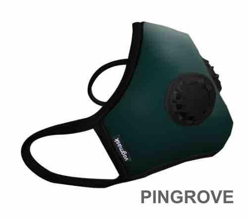 2017 Masque antipolltion vogmask  FFP2 PINGROVE