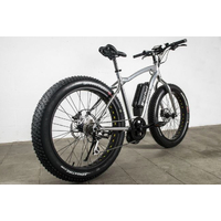 Fat bike electrique E-NORTH