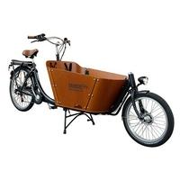 Vélo électrique cargo City biporteur