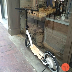 trottinette-electrique-flykly-smartped-a-grandes-roues-1