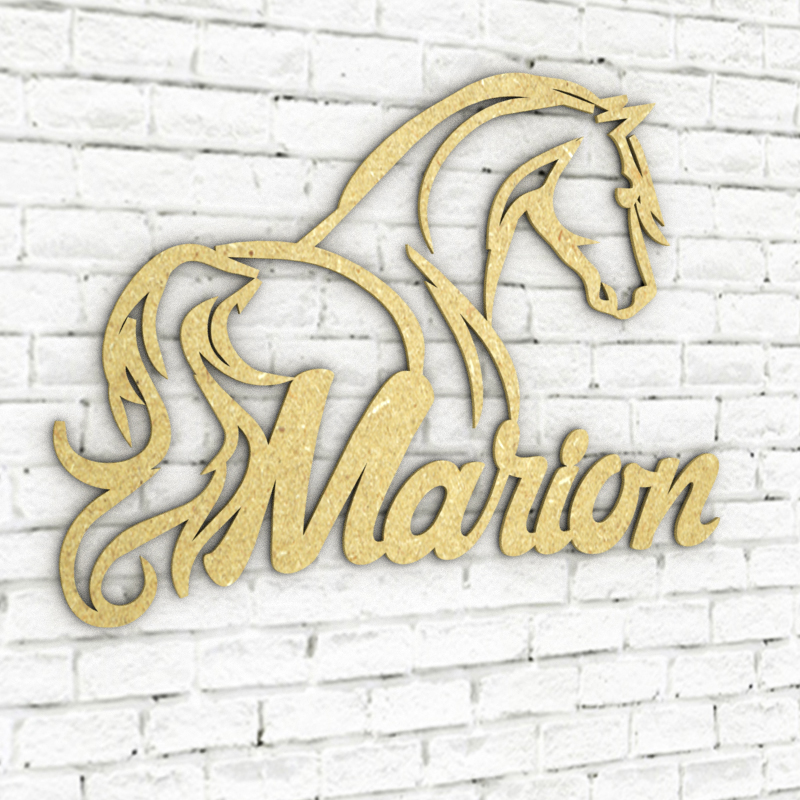 Marion-silhouette-cheval