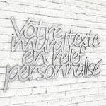 texte-mural-perso-typo-segoe-alu-brossé