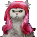 perruque-rose-chat-cheveux-longs-animal-accessoire-funny-mode-fashion