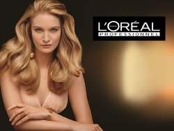 l'oreal professionel categories