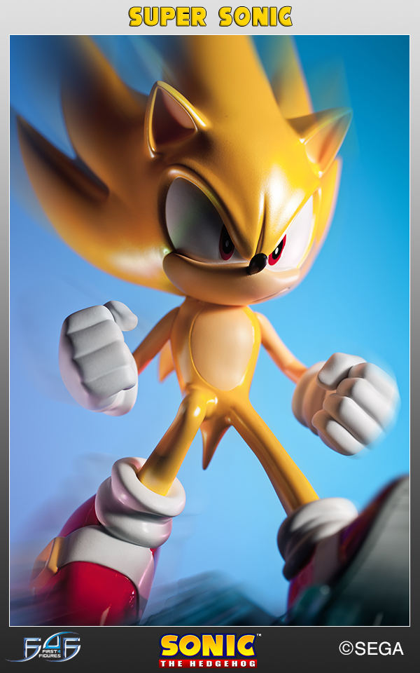 Sonic 1001