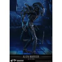 Figurine Aliens Movie Masterpiece Alien Warrior 35cm