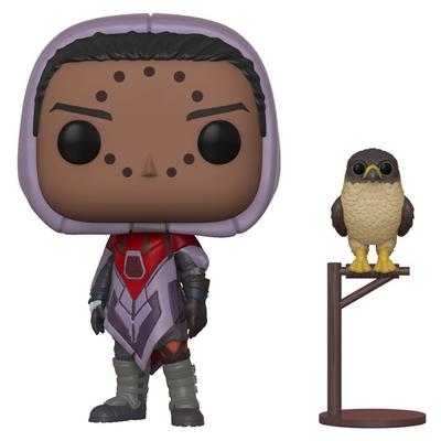 Figurine Destiny Funko POP! Hawthorne w/ Hawk 9cm