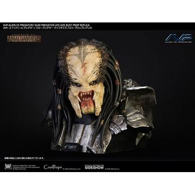 Buste Aliens vs Predator Scar Predator 65cm