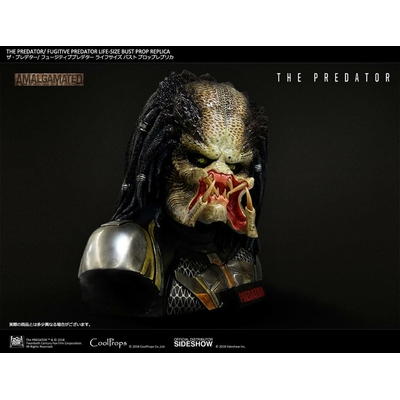 Buste The Predator Fugitive Predator 63cm