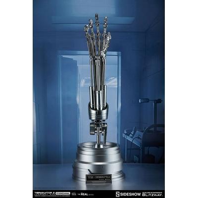 Réplique Terminator 2 The Real T-800 Endoskeleton Arm & Brain Chip Set