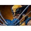 Buste Marvel Comics Wolverine 23cm 1001 Figurines (11)