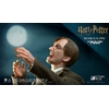 Figurine Harry Potter My Favourite Movie Remus Lupin Deluxe Ver. 30cm 1001 Figurines (2)