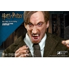 Figurine Harry Potter My Favourite Movie Remus Lupin Deluxe Ver. 30cm 1001 Figurines (6)