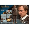 Figurine Harry Potter My Favourite Movie Remus Lupin Deluxe Ver. 30cm 1001 Figurines (7)