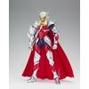 Figurine Saint Seiya Myth Cloth EX Hagen de Merak 18cm 1001 figurines (1)