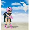 Figurine Dragon Ball S.H. Figuarts Chichi Kid 10cm 1001 Figurines (6)