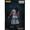 Figurine Samurai Shodown Haohmaru 18cm 1001 Figurines (4)