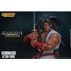 Figurine Samurai Shodown Haohmaru 18cm 1001 Figurines (10)