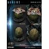 Statue Aliens Premium Masterline Series Warrior Alien Deluxe Bonus Version 67cm 1001 Figurines (4)