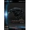 Statue Aliens Premium Masterline Series Warrior Alien Deluxe Bonus Version 67cm 1001 Figurines (9)