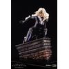 Statuette Marvel Universe ARTFX Premier Black Cat 16cm 1001 Figurines (4)