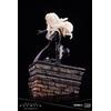Statuette Marvel Universe ARTFX Premier Black Cat 16cm 1001 Figurines (6)