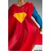Statue DC Comics Superman 52cm 1001 Figurines (13)