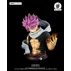Buste Fairy Tail Natsu Dragnir Tsume MUB 75cm 1001 Figurines (1)