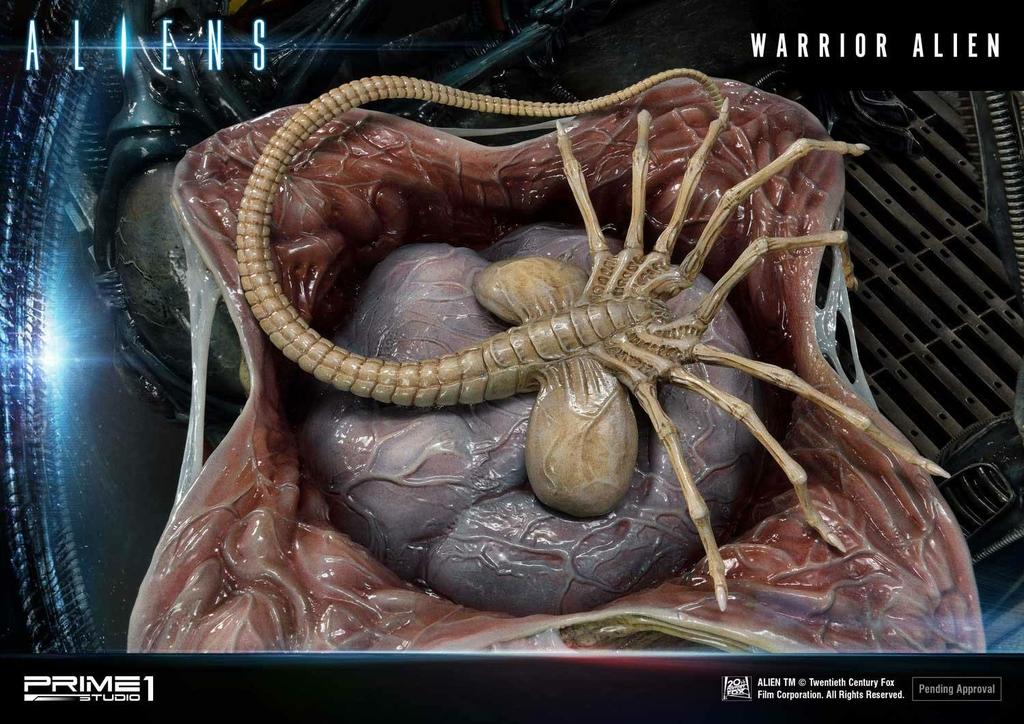 Statue Aliens Premium Masterline Series Warrior Alien Deluxe Bonus Version 67cm 1001 Figurines (18)