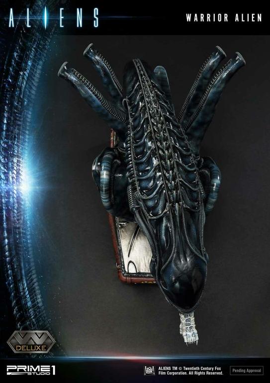 Statue Aliens Premium Masterline Series Warrior Alien Deluxe Bonus Version 67cm 1001 Figurines (26)
