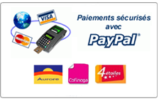 Paypal 1001-Figurines