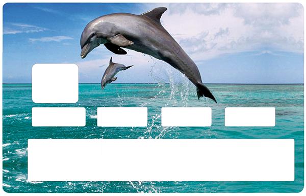 Sticker pour carte bancaire, Les Dauphins