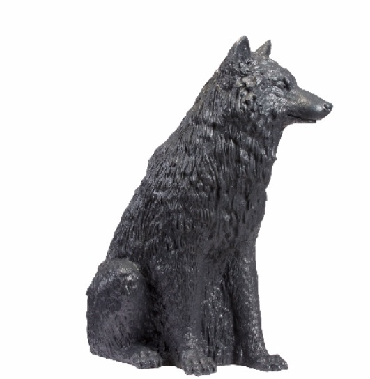 Le loup, Wolf 2017