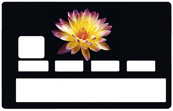 sticker-carte-bancaire-credit-card-stickers-fleur-noir