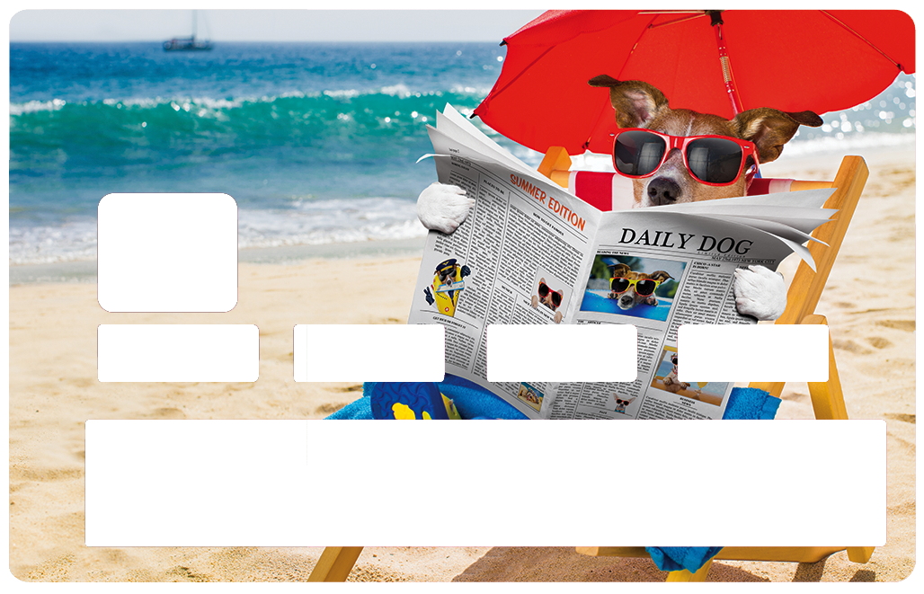 Sticker pour carte bancaire, le chien qui lit à la plage