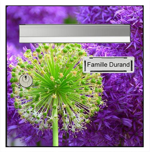 Sticker pour boîte aux lettres, Fleurs