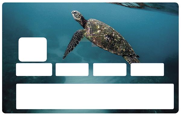 Sticker pour carte bancaire, Tortue Marine