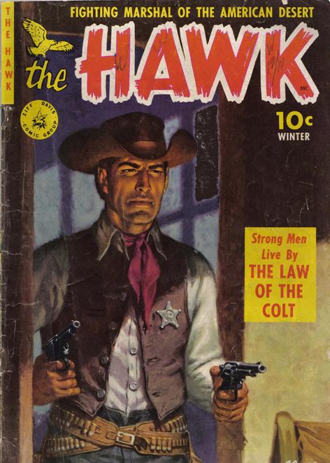 Photo sur toile - The Hawk