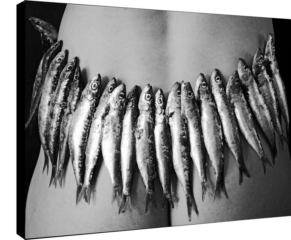 sardines aux fesses  par la photographe Sylwia bernat