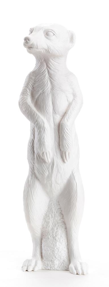 le Suricate debout, Blanc