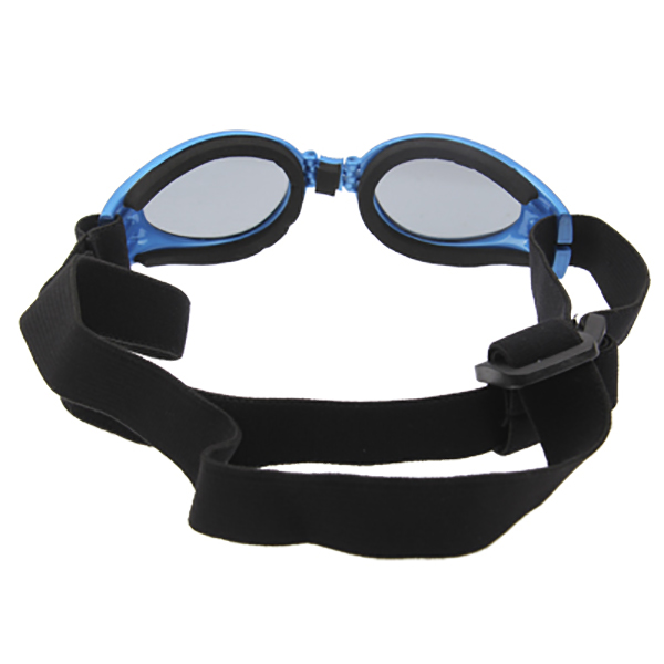lunette-pour-chien-the-little-boutique-3
