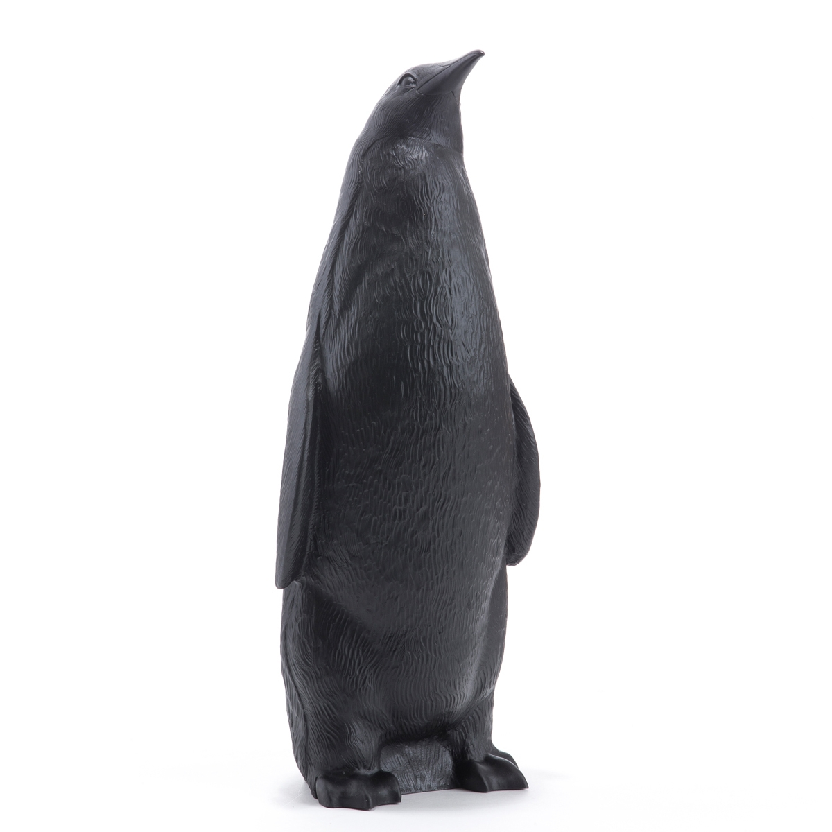 Le Pingouin Tête Haute, Head down