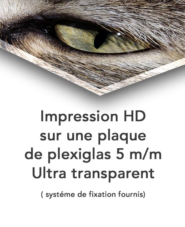 impression-photo-Tirage-sous-Plexiglas-the-little-boutique-4
