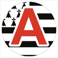 Sticker, Disque A, jeune conducteur, région Bretagne
