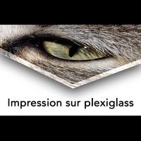 Impression photo HD sur plexiglas