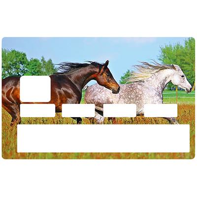 Sticker pour carte bancaire, Les chevaux