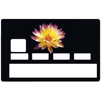 Sticker pour carte bancaire, Fleur feux d'artifice